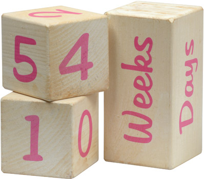 Maple Landmark Baby Photo Prop Blocks, Pink